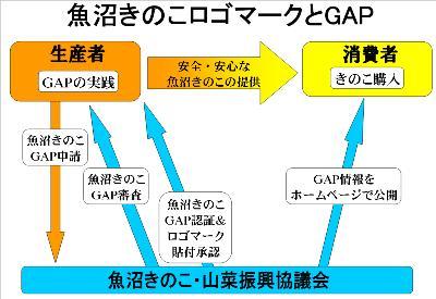 魚沼きのこGAP認証の流れ